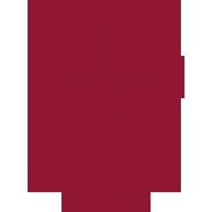Piktogramm weiblich